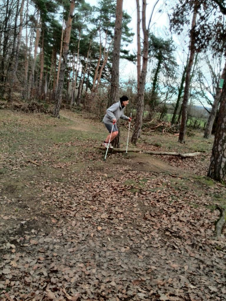 Bois de la Brosse le 13 Janvier 2015