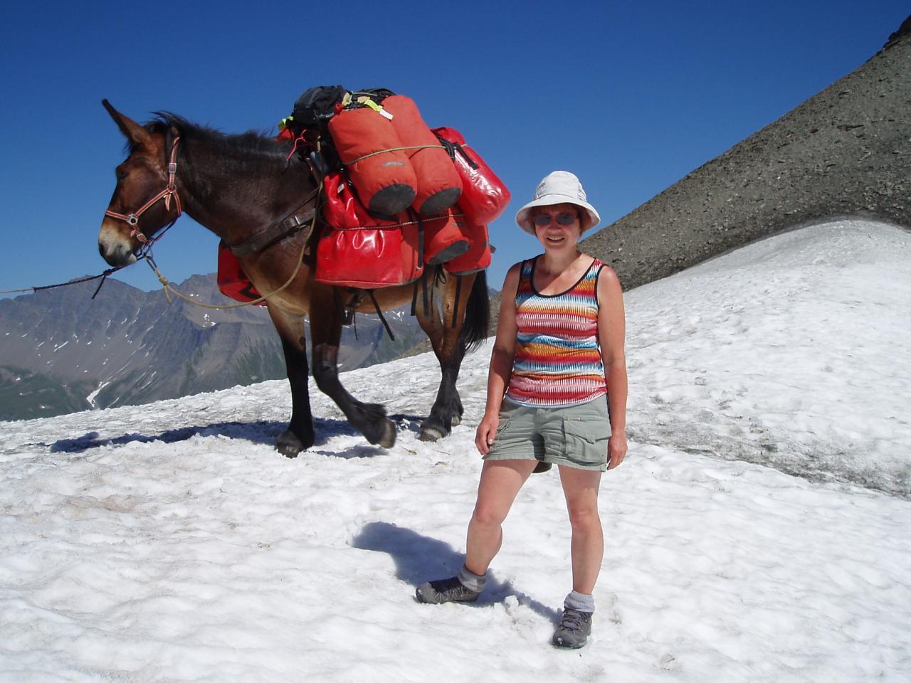 Notre guide et sa mule
