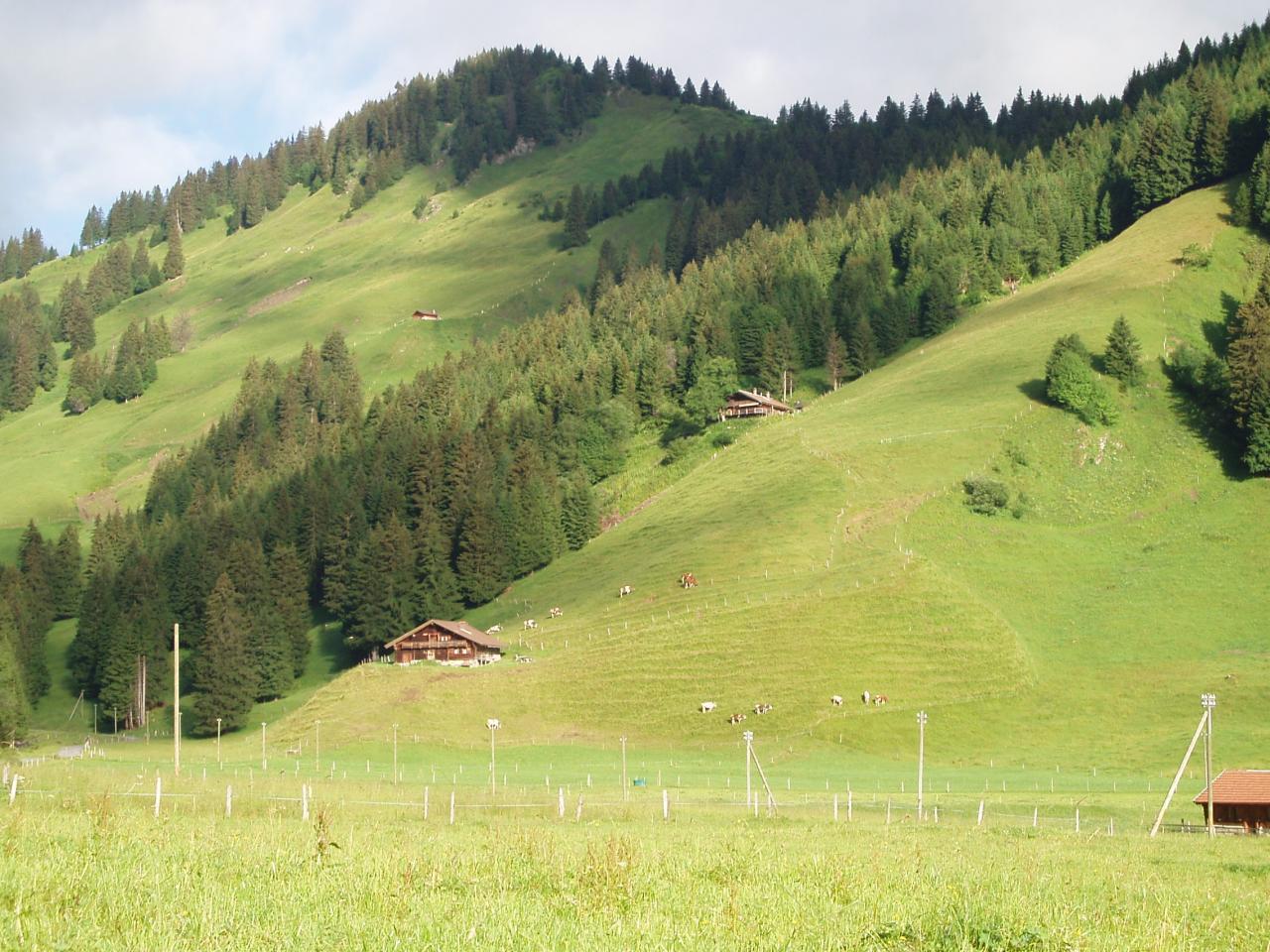 Paysages suisses